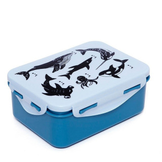 LUNCH BOX ANIMAUX MARINS